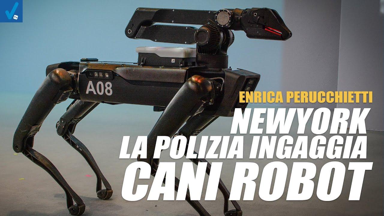 New-York-la-polizia-ingaggia-il-cane-robot.-Rischiamo-un-futuro-alla-Robocop